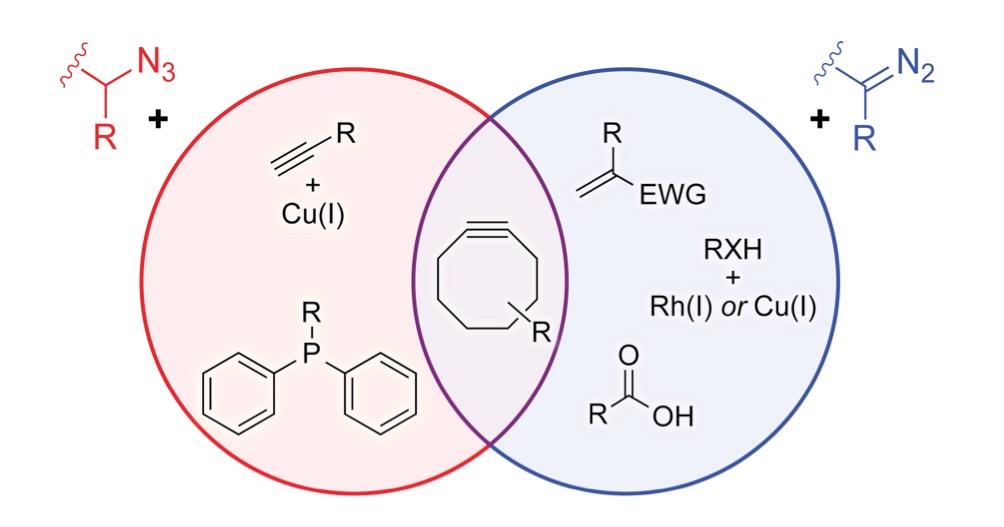 raines-lab-chemistry-img-2