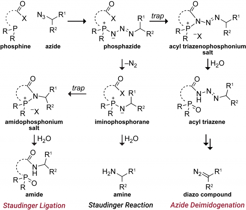 chemistry_image_1